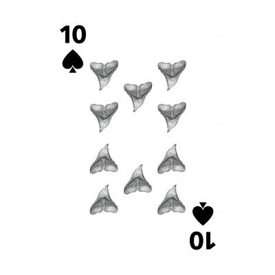 OCEARCH Shark Playing Cards